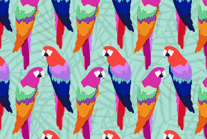 Colorful parrot pattern